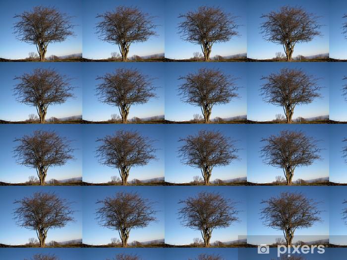 Vinylová tapeta na míru ALBERO invernale nel cielo blu - Témata