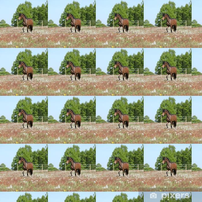 Vinylová tapeta na míru Amazing hnědá sportovní pony běží na pastvě - Savci