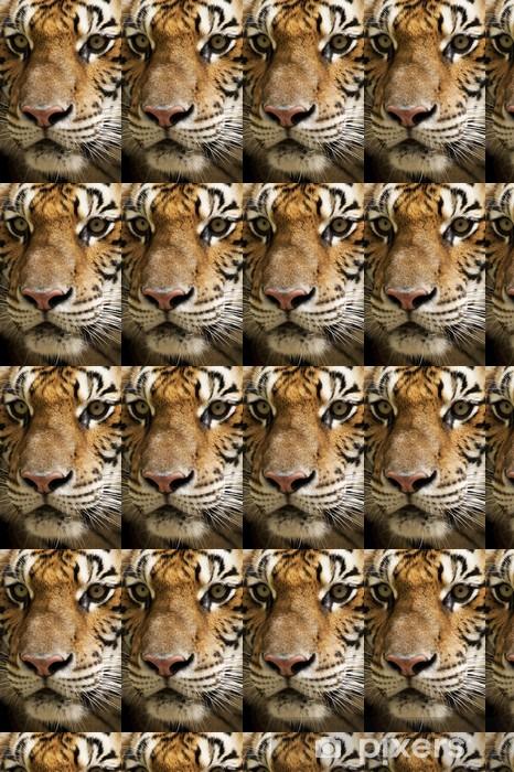 Vinylová tapeta na míru Tiger obličeje - Témata