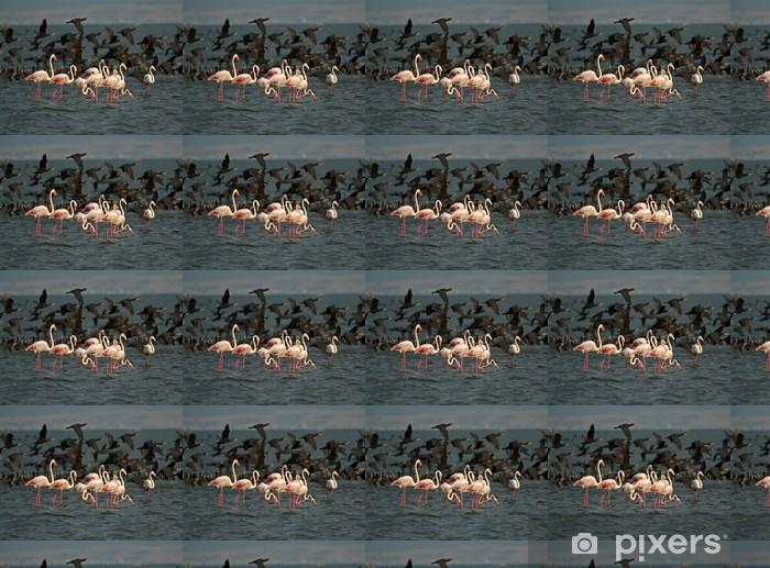 Vinylová tapeta na míru Flamingos - Ptáci