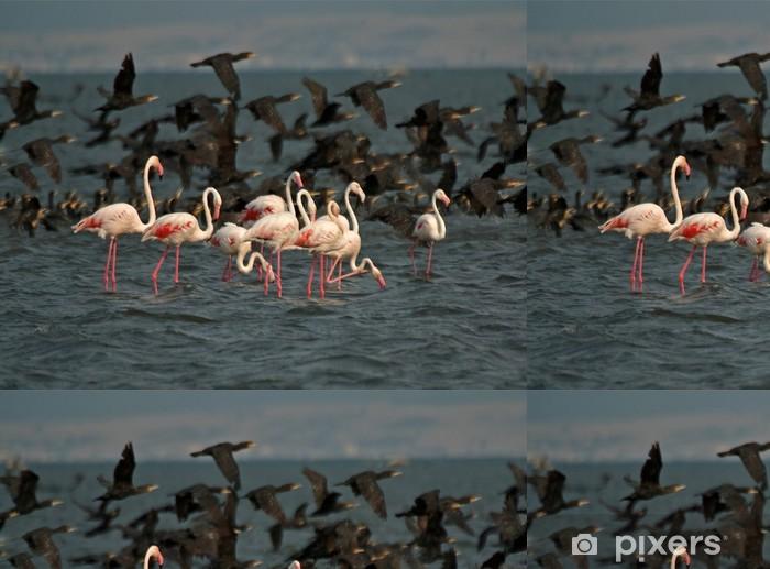 Vinylová Tapeta Flamingos - Ptáci