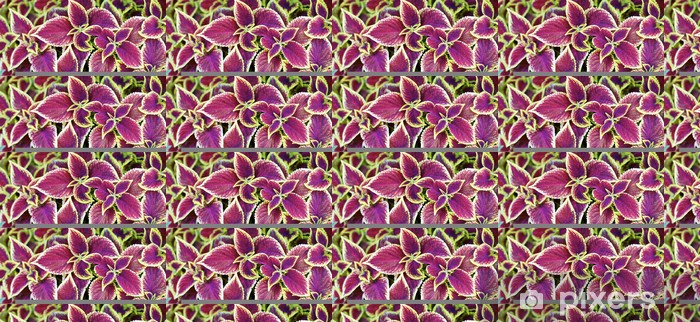 Papier peint vinyle sur mesure Plantes ornementales - Fleurs