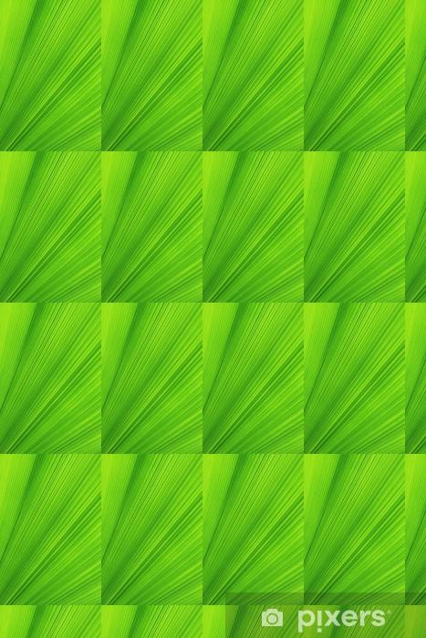 Tapeta na wymiar winylowa Tekstury z zielonych liści palmowych - Cuda natury