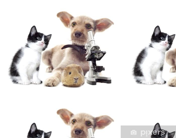 Vinyl Behang Puppy en microscoop - Gezondheid en Geneeskunde
