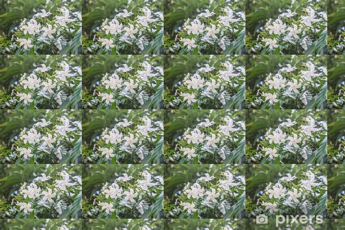 Papier peint vinyle sur mesure Blanc Sampaguita Jasmine ou Jasmin Sambac - Fleurs