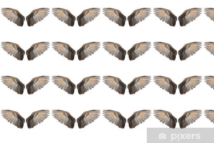 Vinyltapete nach Maß Wings - Fabelwesen