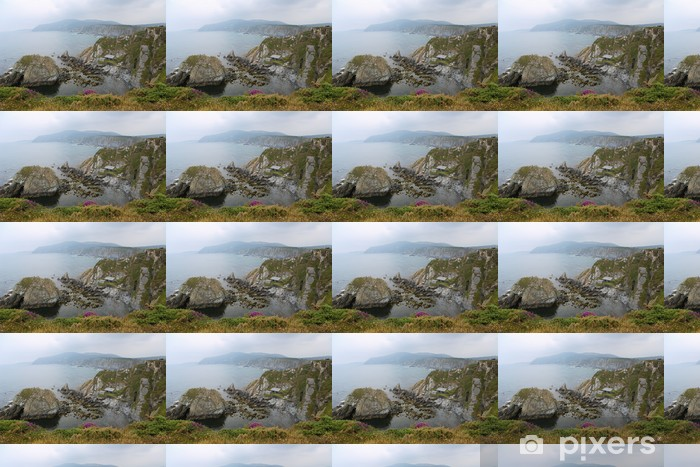 Beautiful Atlantic Coast at Ortigueira, Galicia, Spain Vinyl custom-made wallpaper - Europe