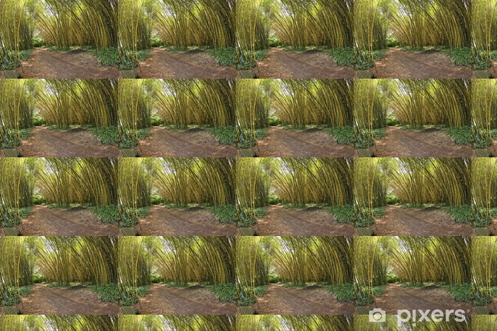Papier peint vinyle sur mesure L'intérieur d'une forêt de bambous - Plantes