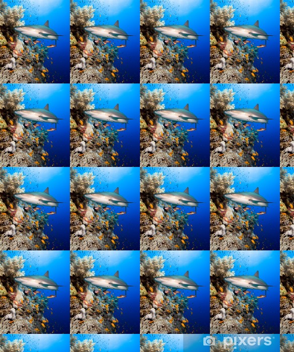 Papier peint vinyle sur mesure Récif de corail avec le requin - Requins