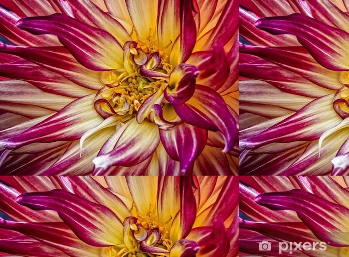 Vinylová Tapeta Colorful Dahlia květiny - Květiny