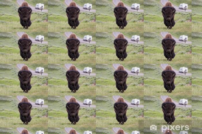 Vinyl behang, op maat gemaakt Wilde bizons in Yellowstone - Vakantie