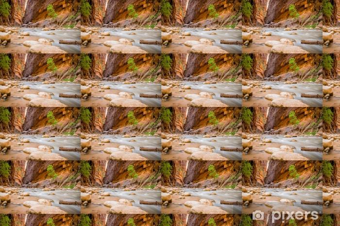 Tapeta na wymiar winylowa Virgin River Park Narodowy Zion w Utah - Pustynie