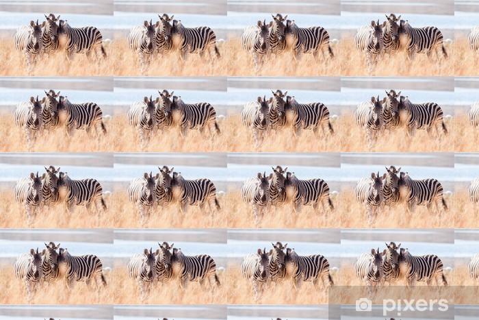Papel pintado estándar a medida Una pequeña manada de salvajes cebra de Burchell frotando la cabeza cerca de un lago - Temas