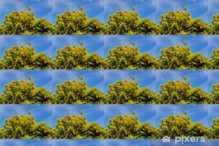 Tapeta na wymiar winylowa Orange drzewa na Palatynie w Rzymie - Drzewa