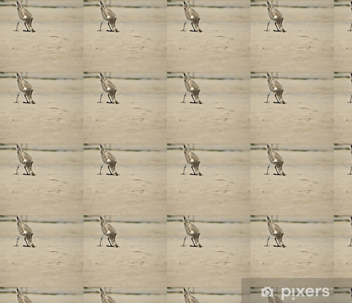 head in the sand Vinyl custom-made wallpaper - Birds