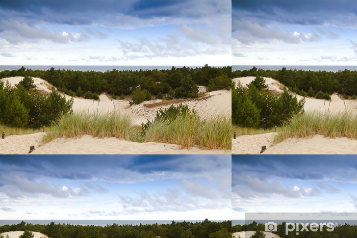 Vinyltapete Sanddünen an der Ostseeküste in den Morgen - Freiluftsport