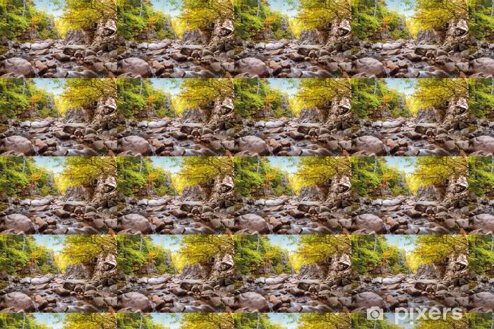 Trees growing on rocks above stream Vinyl custom-made wallpaper - Water
