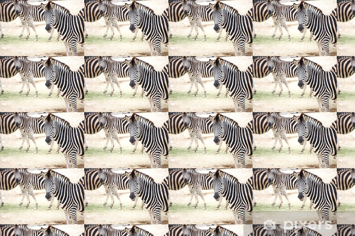 Papier peint vinyle sur mesure Zebra et troupeau - Thèmes