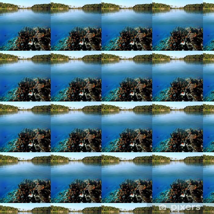 Vinylová tapeta na míru Foto korálové kolonie - Osud
