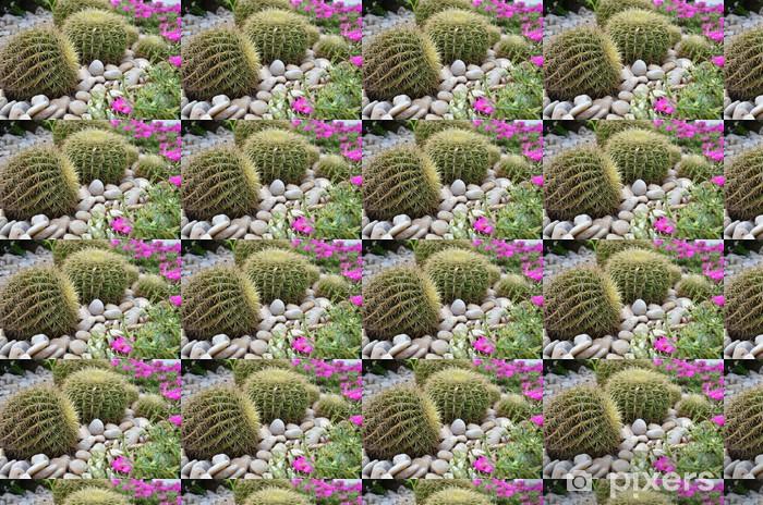 Vinylová tapeta na míru Globe tvar kaktus - Rostliny