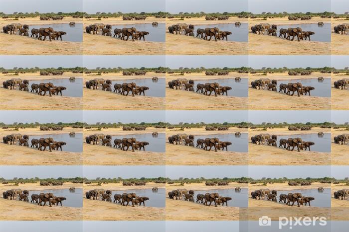 Vinylová tapeta na míru Několik slyšel afrických slonů na napajedlo - Témata