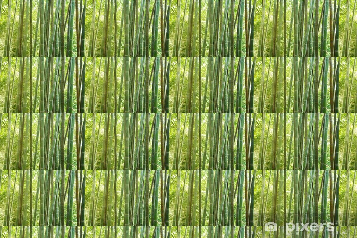 Vinyltapete nach Maß Bamboo forest - Themen