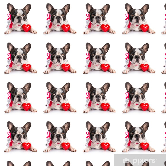 Cute french bulldog with a red heart isolated on white Vinyl custom-made wallpaper - Happiness