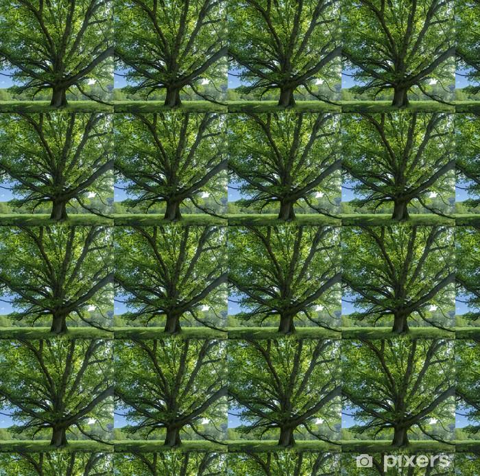 Eiche #7 Vinyl custom-made wallpaper - Trees