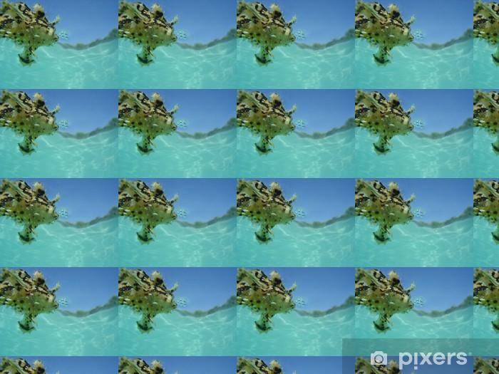 Tapeta na wymiar winylowa Bubble Fish - Zwierzęta żyjące pod wodą