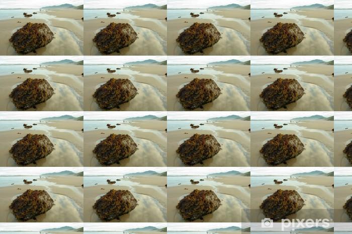 Papier peint vinyle sur mesure Algues roche - Eau