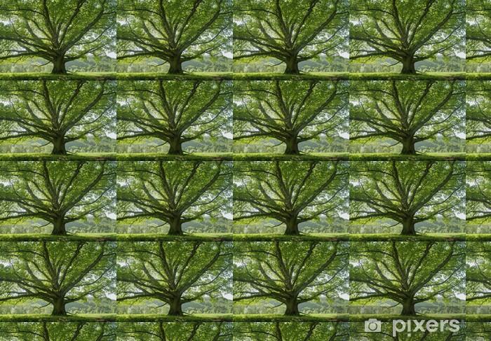 Vinylová tapeta na míru Oak # 8 - Stromy