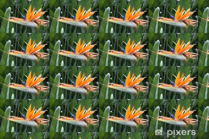 """Papier peint vinyle sur mesure """"Parrot Flower"""" - Fleurs"""