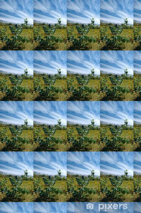 chardon dune bretagne Vinyl custom-made wallpaper - Water