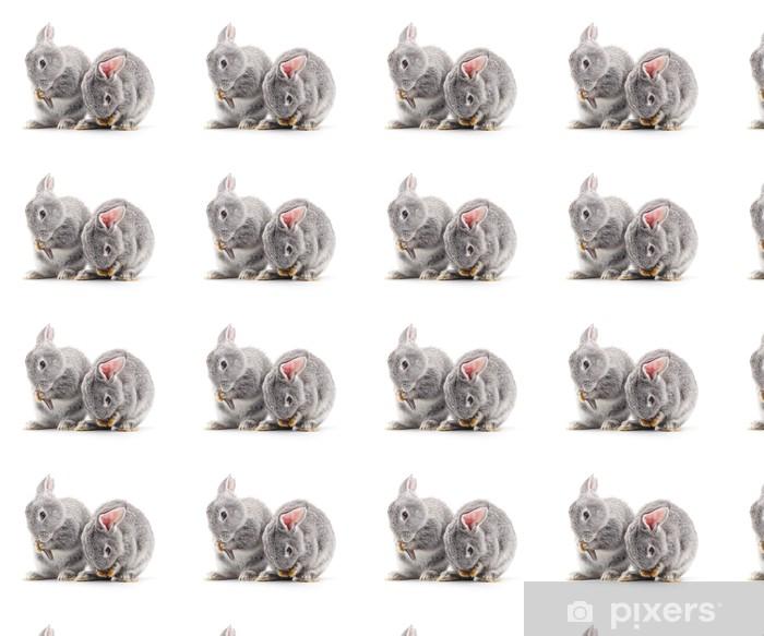 Baby rabbits. Vinyl custom-made wallpaper - Mammals