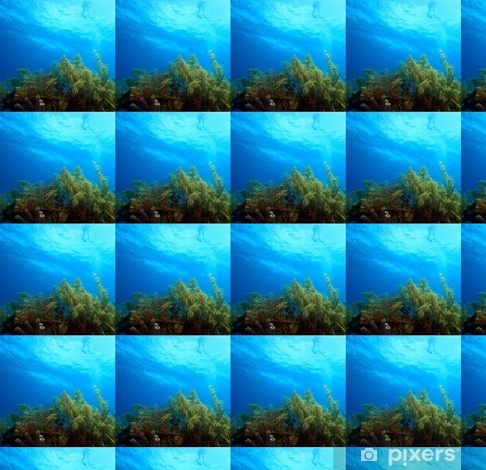 Vinyl behang, op maat gemaakt Snorkelaar - Onderwater