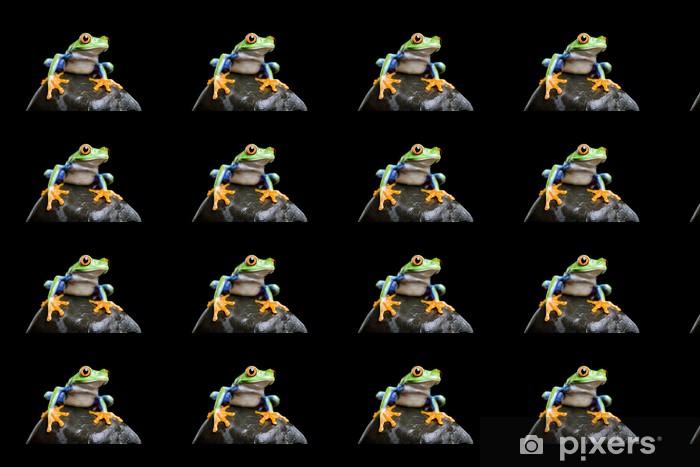 Vinyltapete nach Maß Frosch auf einem Felsen Großansicht und isoliert auf schwarz - Andere Andere