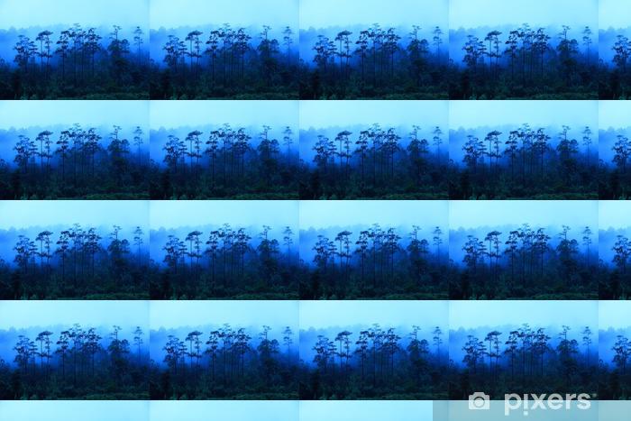Papier peint vinyle sur mesure Nord de la Thaïlande Rainforest dans le brouillard avant le lever du soleil - Paysages