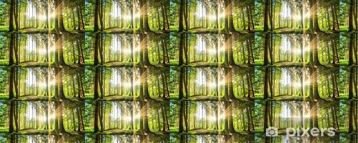 Tapete Wald Panorama Mit Sonnenstrahlen Pixers Wir Leben Um Zu