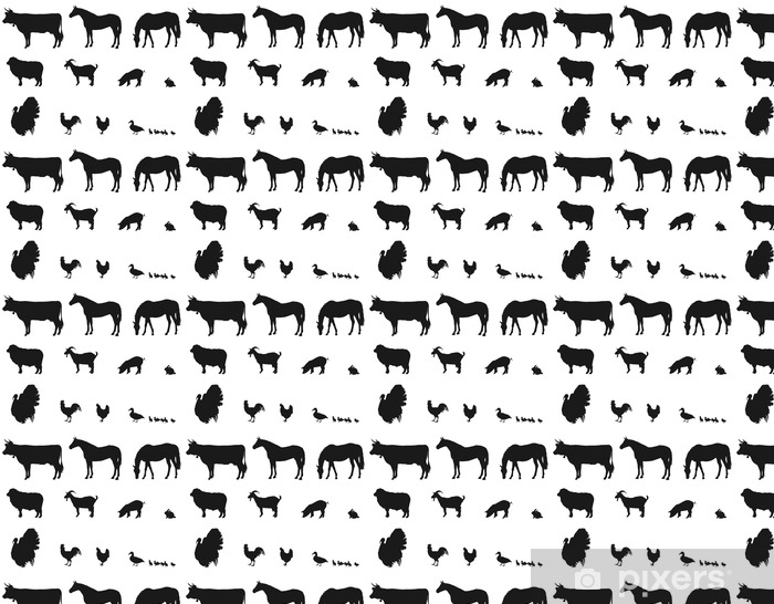 Vinyl behang, op maat gemaakt Dieren die op de boerderij - Dieren