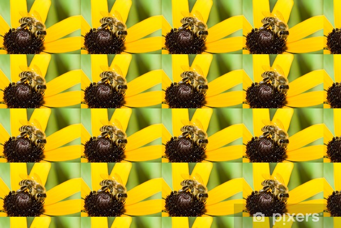 Closeup of a honey bee resting on a flower Vinyl custom-made wallpaper - Other Other
