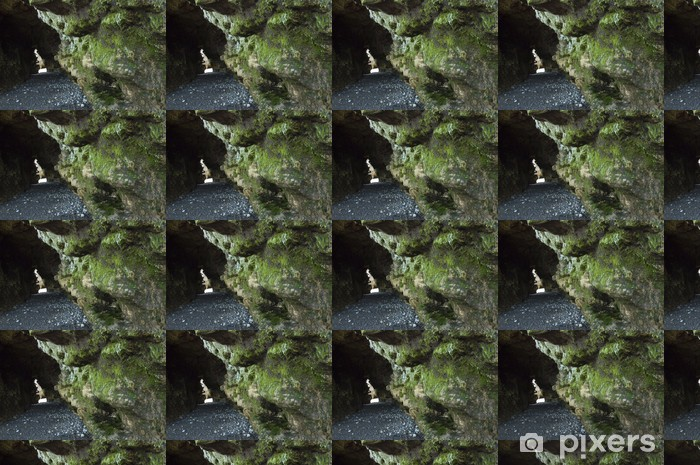 Papier peint vinyle sur mesure Caverne - Ecologie