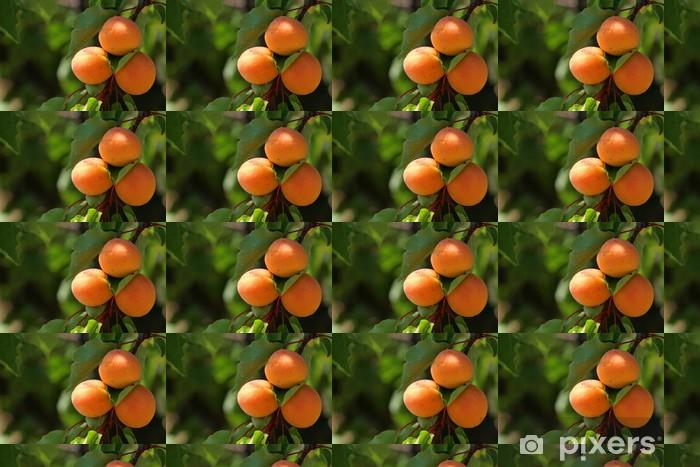 Papier peint vinyle sur mesure Trio d'abricots - Fruits