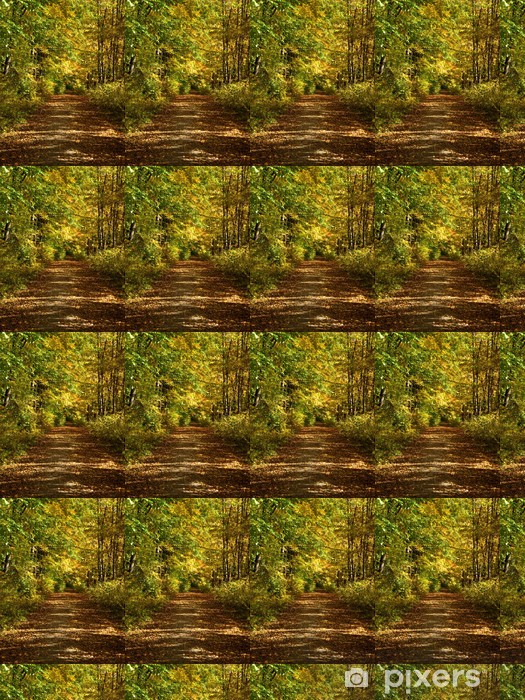 Tapeta na wymiar winylowa Droga leśna w jesiennej świetle - Pory roku