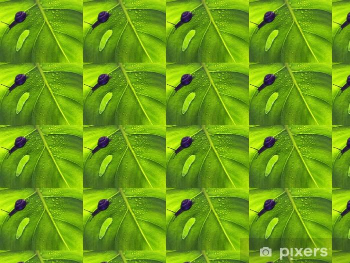 Vinyltapete nach Maß Close-up der grünen Pflanze Blatt - Pflanzen