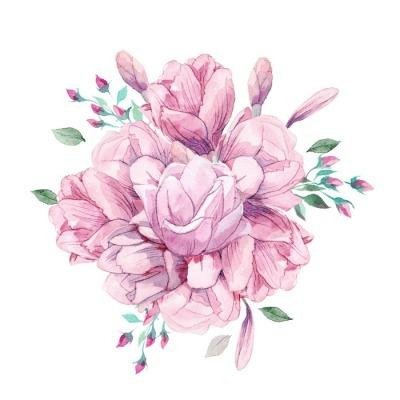 Muursticker Verschillende aquarel rozen romantische collectie