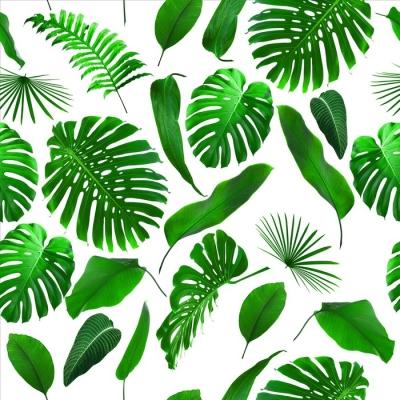 Tropical Hawaïen Coton Fabrication Tissu rideau de douche ~ Fougères//Orchidées ~