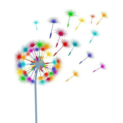 Naklejka na ścianę Kolorowe dandelion