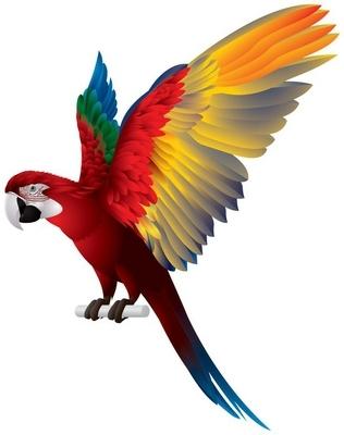 Sticker mural Parrot Ailes déployées