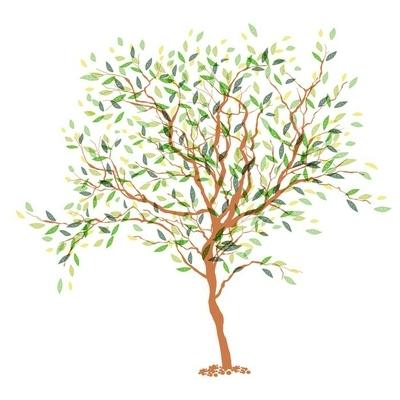 Muursticker Boom. De stam en blad in afzonderlijke lagen. vector illustrati