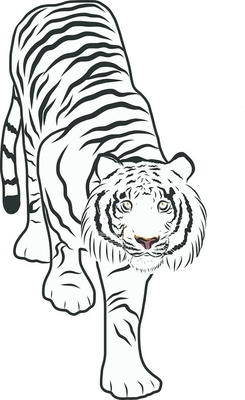 Piirretty Tiikeri